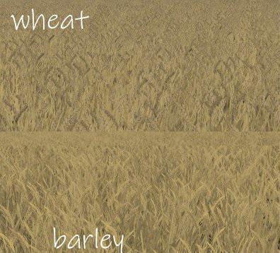 FS19 - Wheat - Barley Texture V1.0
