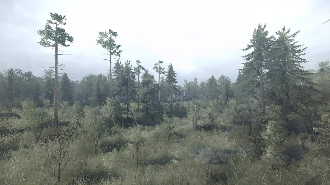 Spintires:Mudrunner - The Forest of Reserves Map V02.12.19