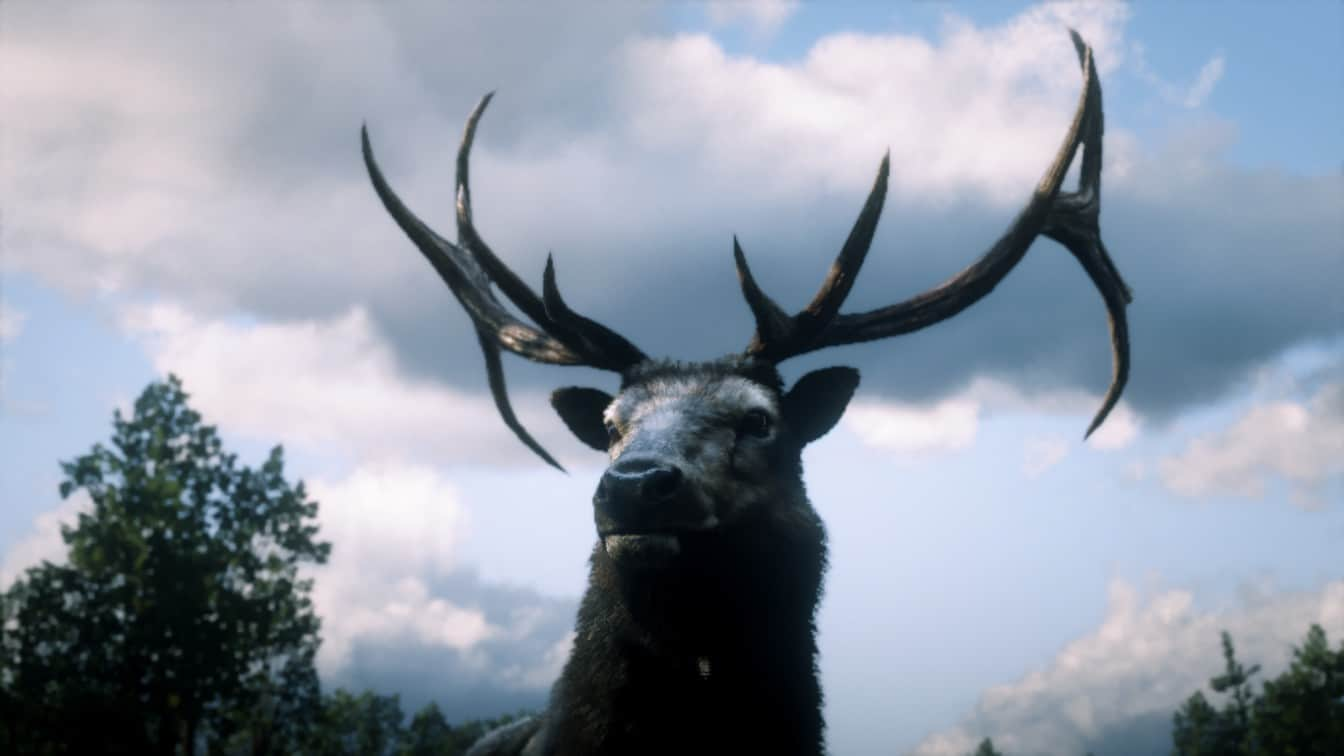 RDR2 - More Perfect Animals
