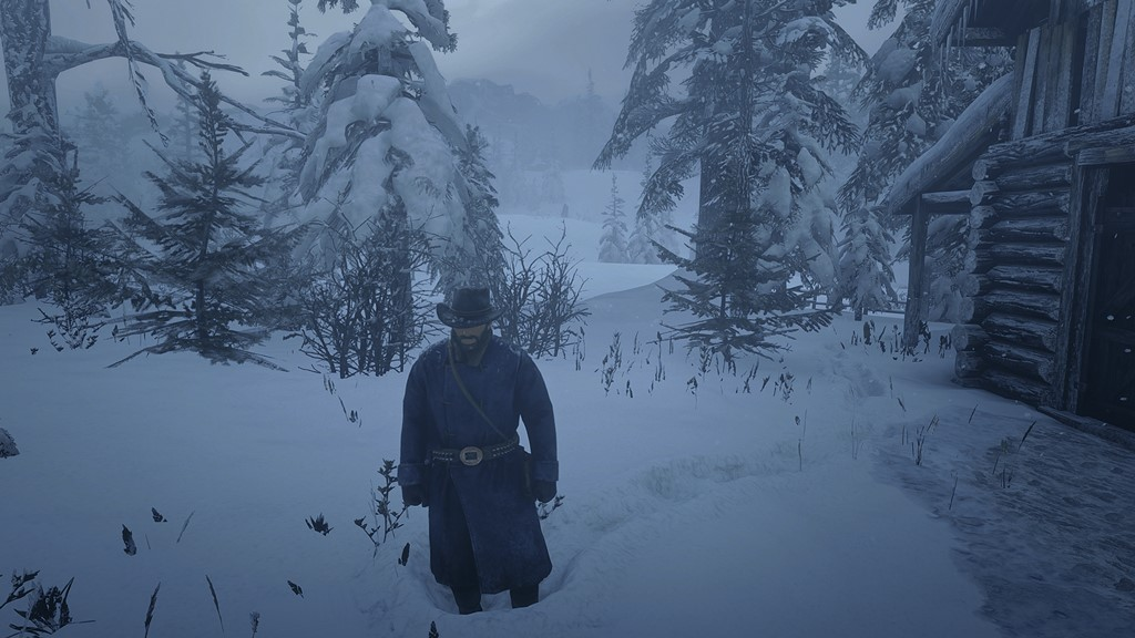 RDR2 - Best Settings for RX 580