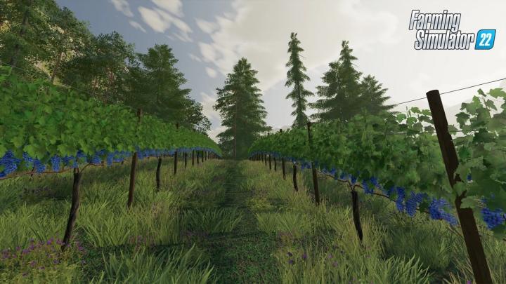Farming Simulator 22 New Crops In Video Presentation + Screenshots #1