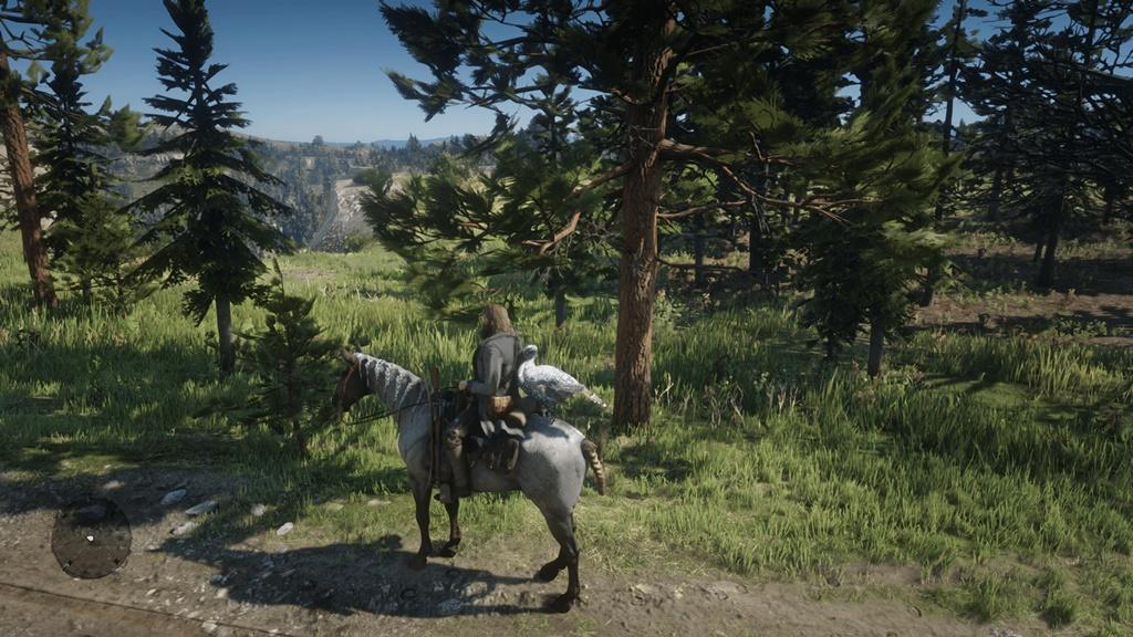 RDR2 - Horse TP