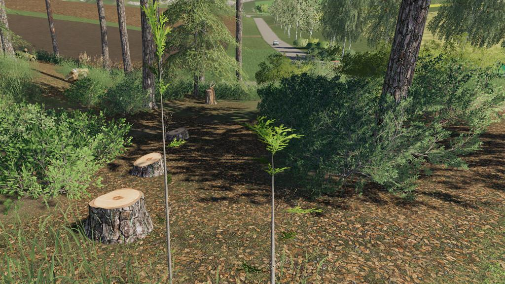 FS19 - Player Plant Trees V1.0