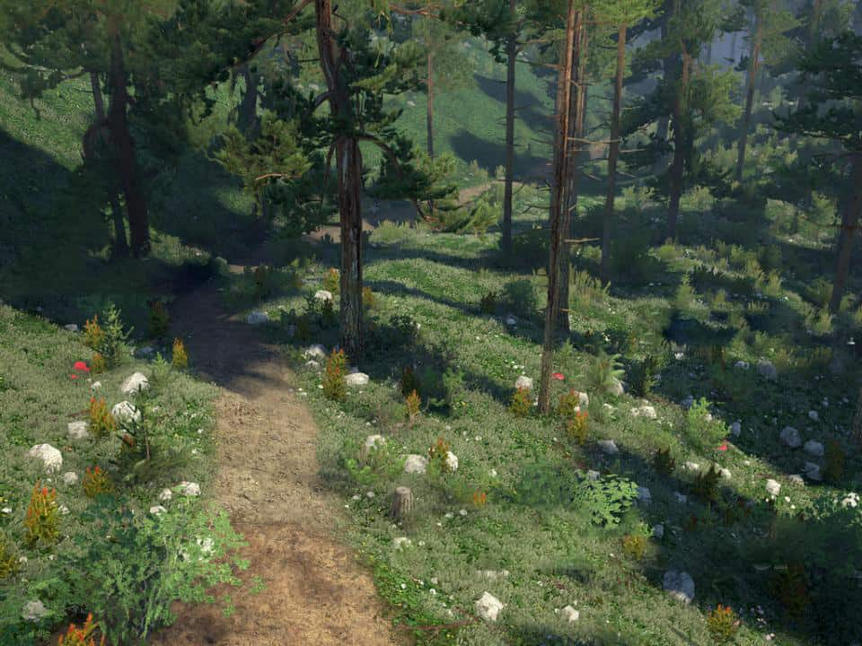 Spintires:Mudrunner - Great Tree Trail Map V1.0
