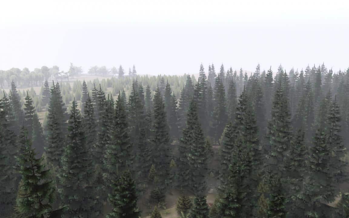 Spintires - Fir-Tree Mod for Editor (Tree 4) V1.0