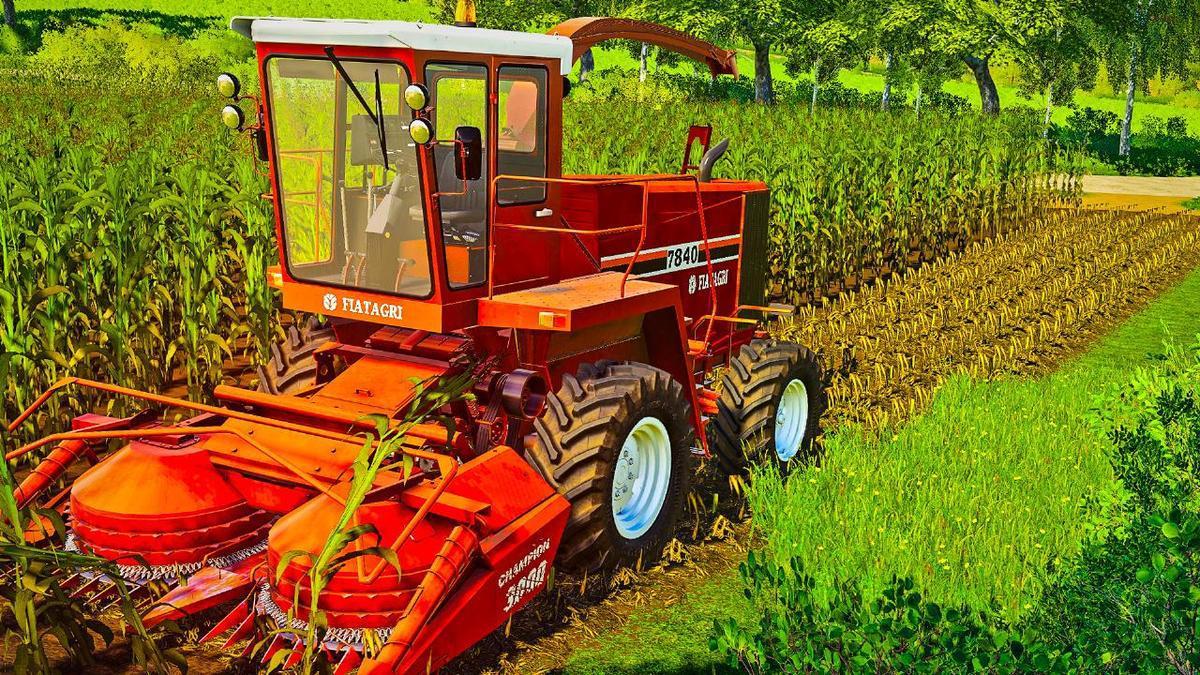 FS19 - Corn Texture V1.0