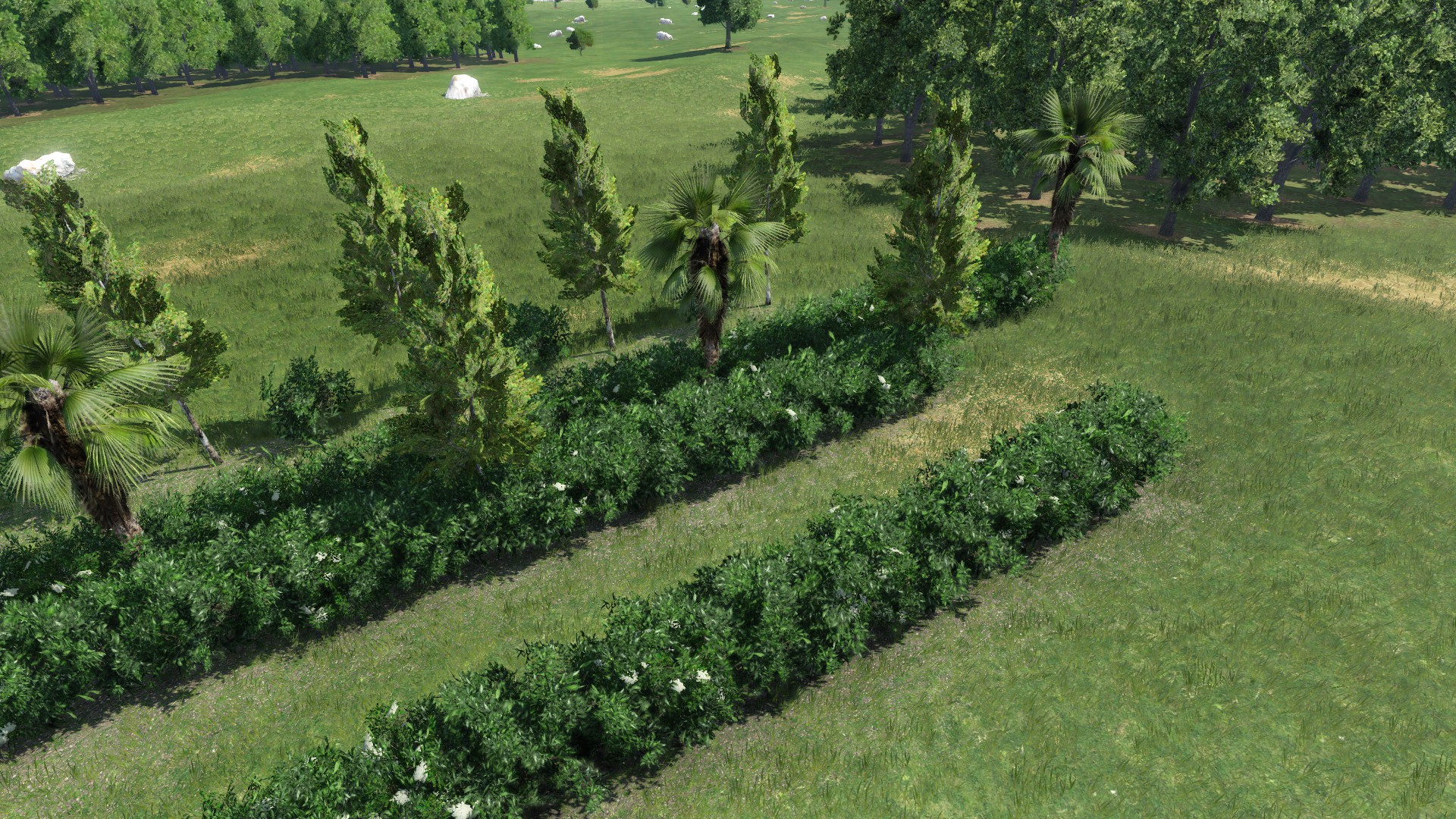 Transport Fever 2 - Hedges and Streets Package