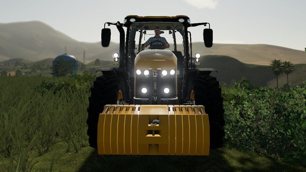FS19 - Adjustable Weight V1.1