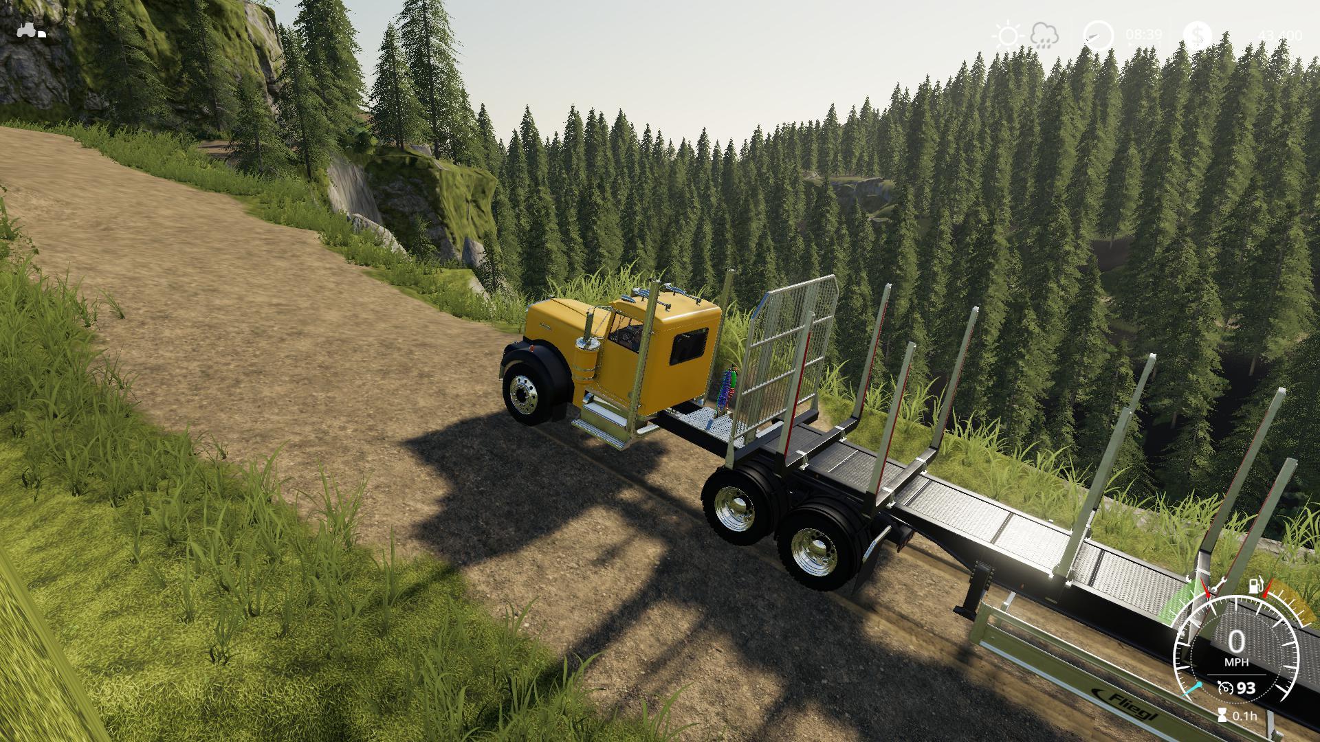 FS19 - Bear Rock Logging V1.1