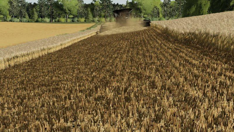 FS19 - Barley / Wheat Texture V1.0