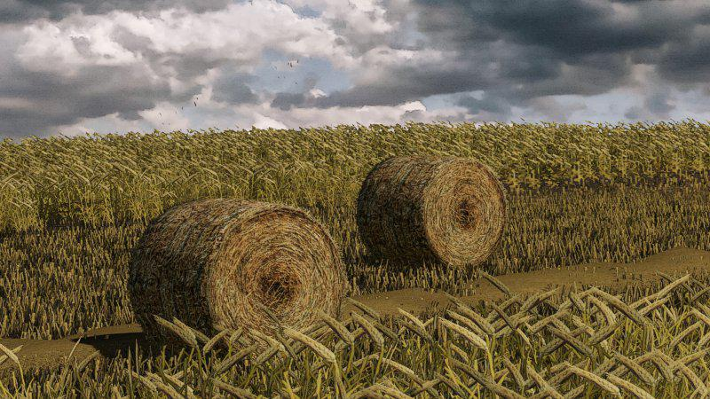 FS19 - Wheat – Barley – Windrow – Bales – Animations v1.0