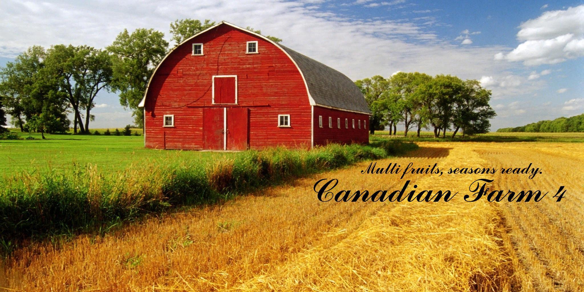 FS19 - Canadian Farm Map V4.0