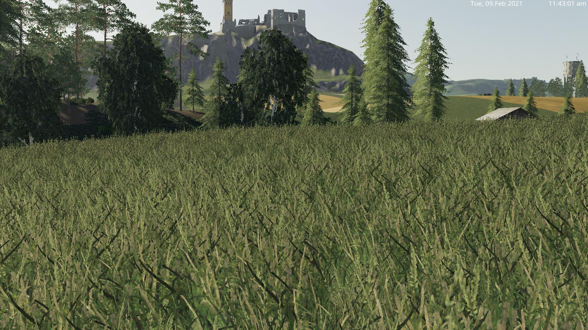 FS19 - Grass Texture V1.0